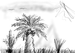 رسم بالقلم الضوئي، نخلة
